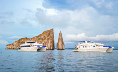 Great Last Minute Galapagos Cruises