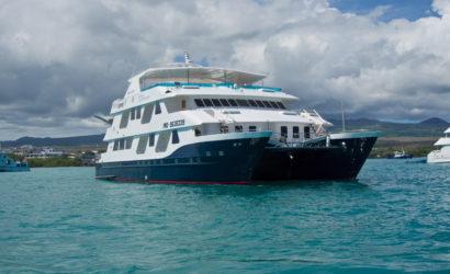 Luxury Cruise Galapagos