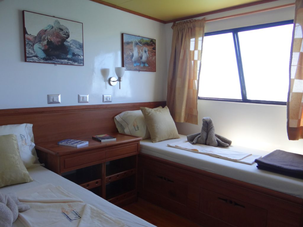 Angelito lower beds make it the best budget friendly Galapagos cruise