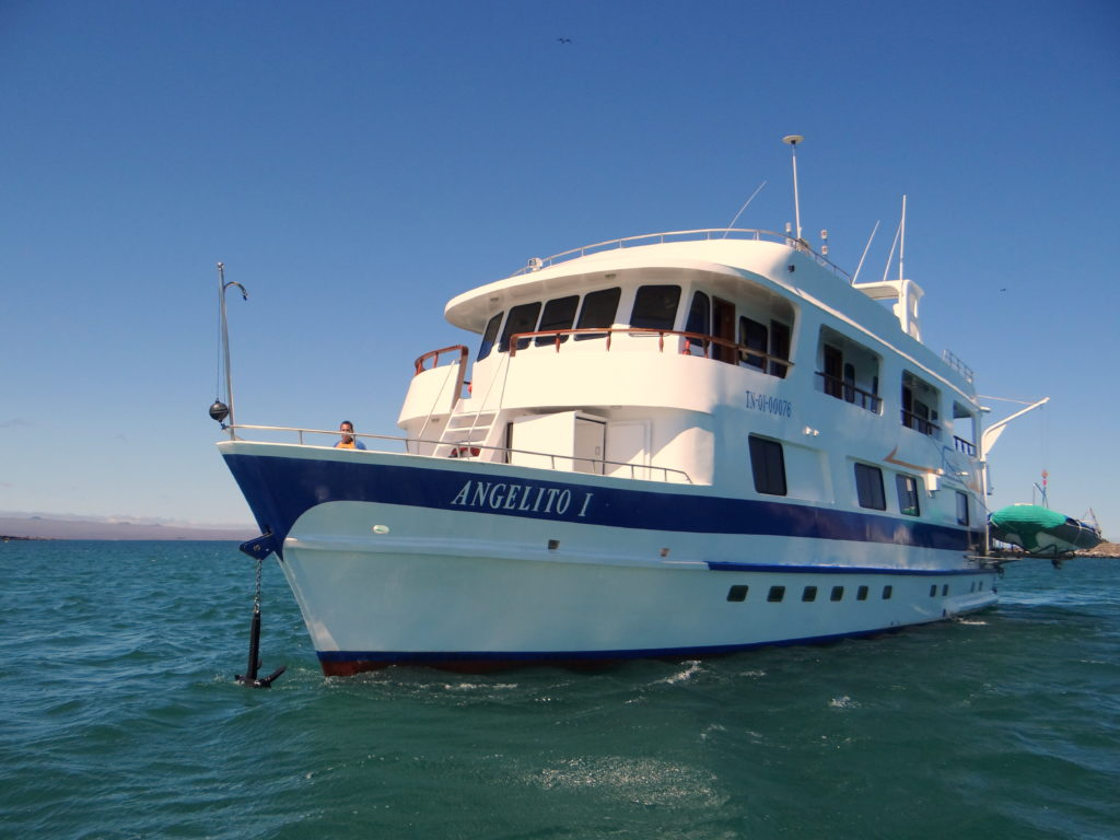 Angelito the best budget friendly Galapagos cruise