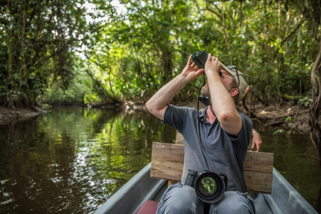 Creek paddling and the best birdwatching in Yasuni
