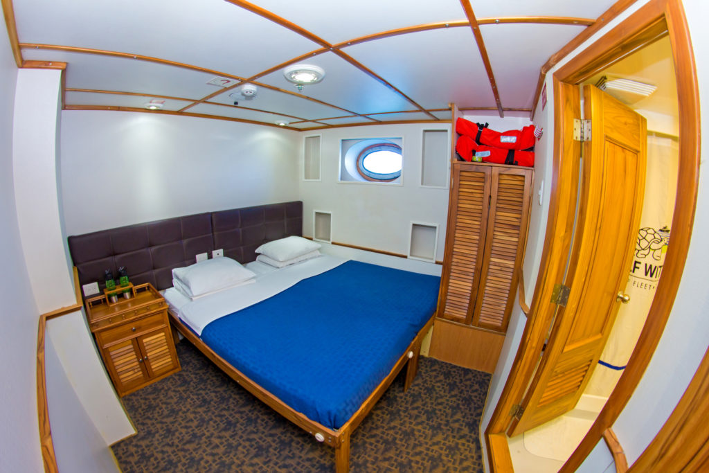 Tip Top IV Lower deck double cabin