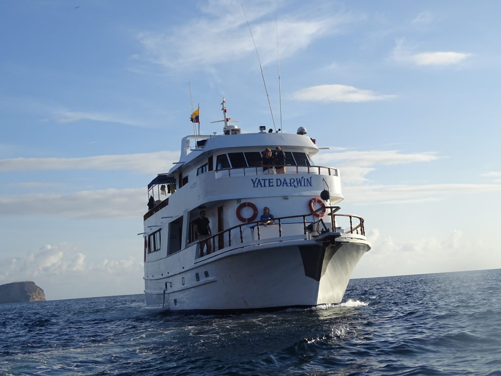 Darwin Yacht the Cheapest Galapagos Cruise