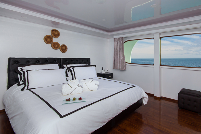 Petrel spacious intimate suite perfect deluxe luxury Galapagos cruise experience