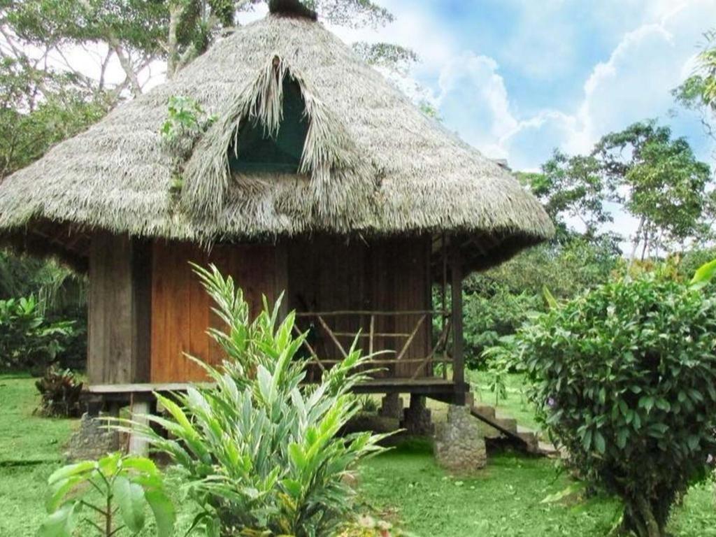 Suchipakari Rainforest Lodge Accommodation