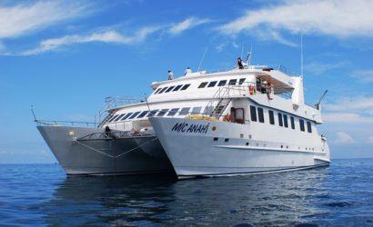 Anahi First Class Galapagos Catamaran