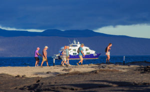 How much does a Galapagos Cruise Cost?
