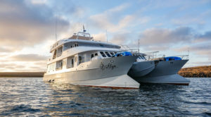 Top 5 Galapagos Charters