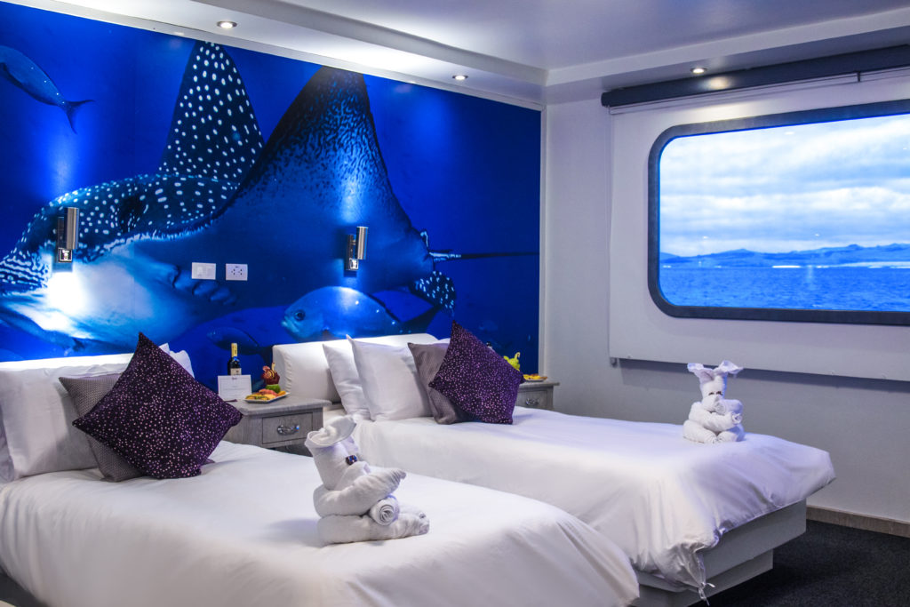 Convertible Staterooms onboard the Camila Trimaran