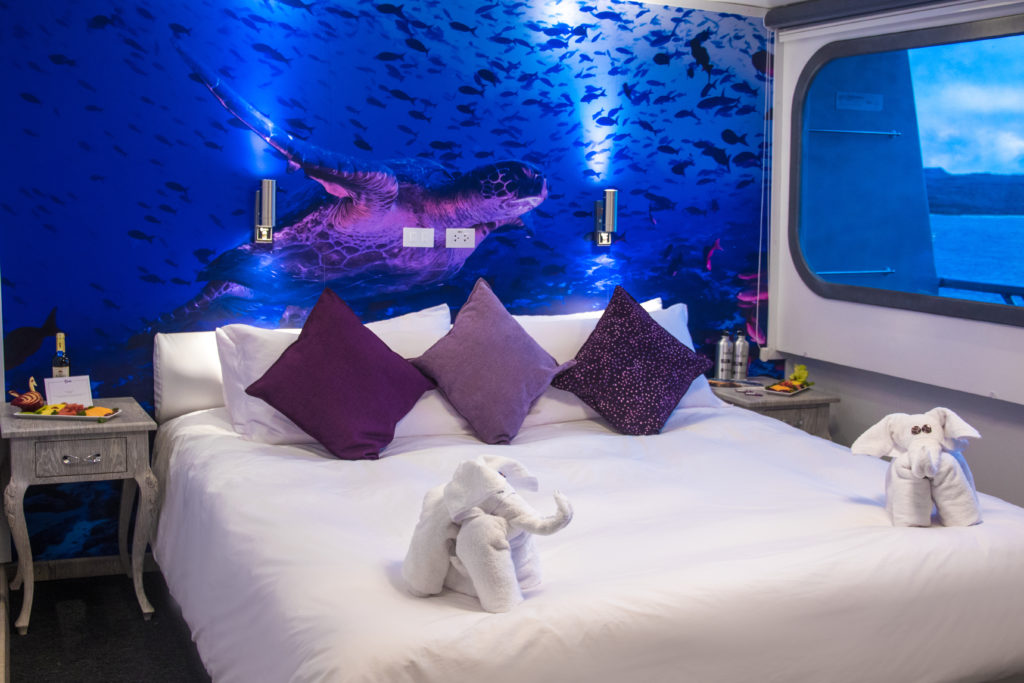 Beautiful Stateroom decor make for the Finest Galapagos Luxury Experience