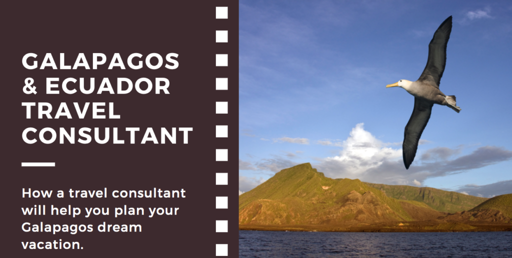 5 reasons to use a Galapagos Travel Consultant