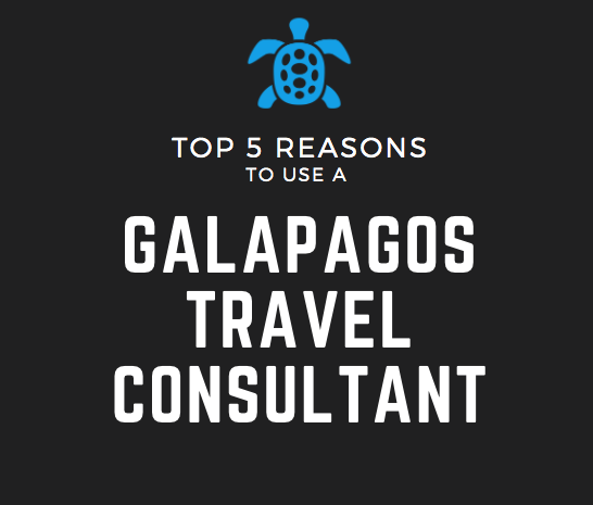 Top 5 Reasons to use a Galapagos Travel Consultant