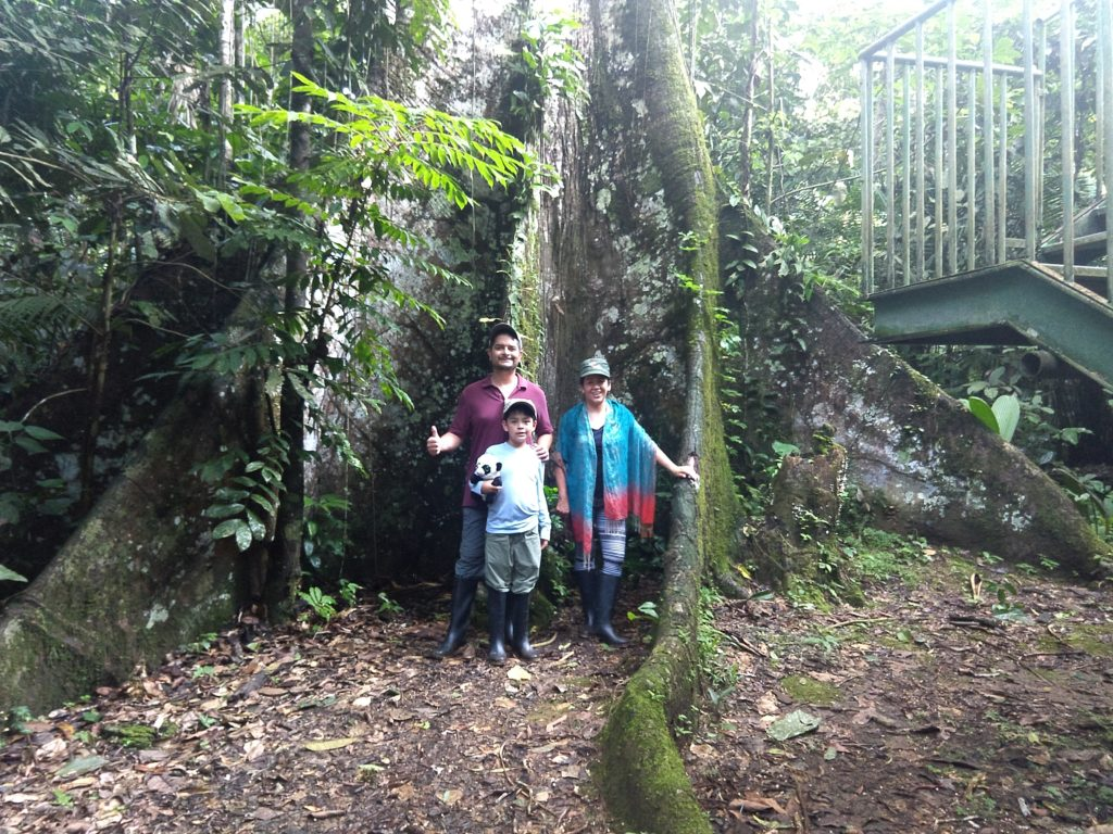 Forest walks at the Napo Cultural Center