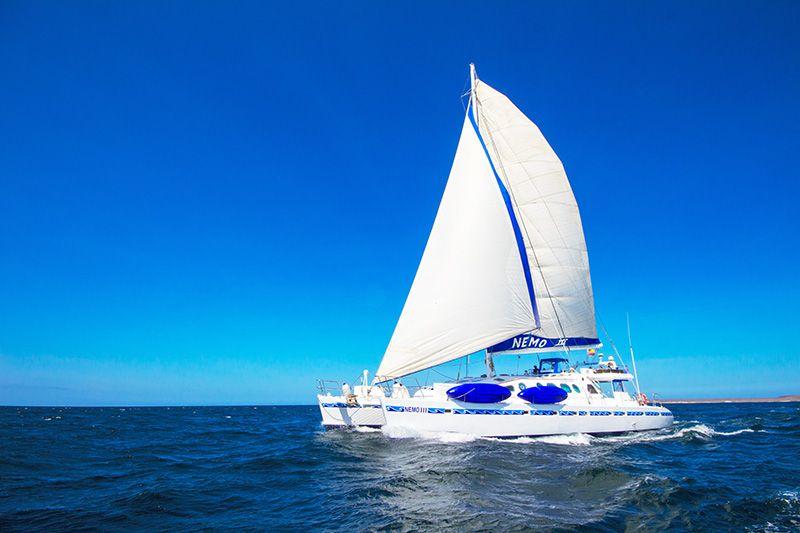 First Class Galapagos Catamaran