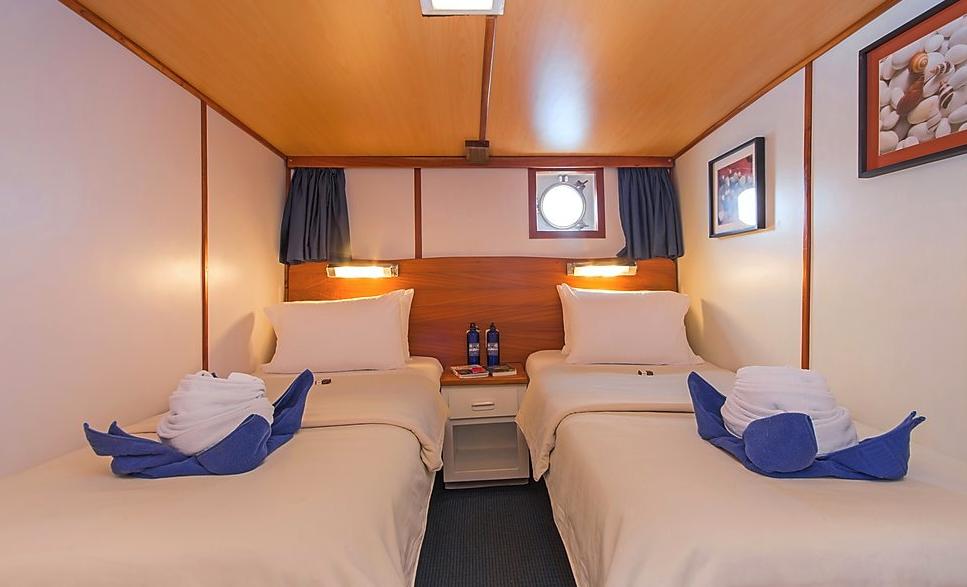 Beluga Lower deck Twin Cabin
