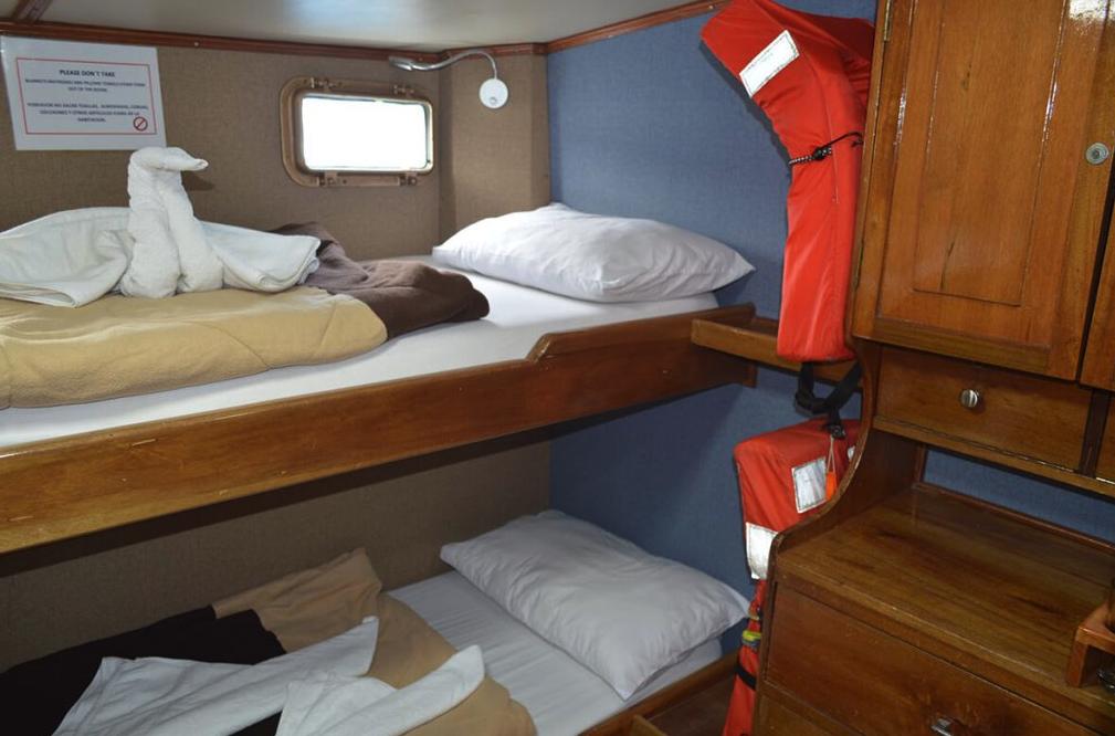 Golondrina bunk beds