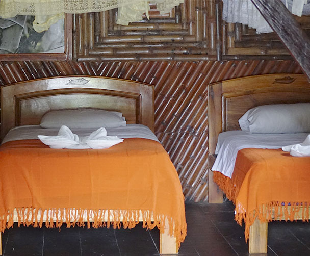 Caiman Lodge the best budget Amazon Lodge in Ecuador